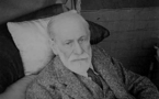 Vido de Sigmund Freud, 1re partie
