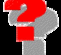 Qu'est-ce l'autorité hiérarchique, fonctionnelle et déléguée et quelles relations avec le psychologue ? Réponse par Senja Stirn